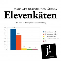 elevenkät_miniatyr